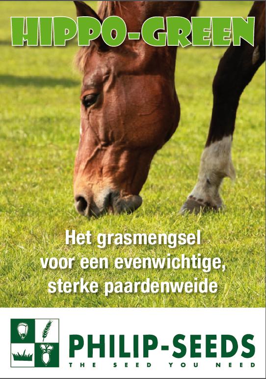 BosmansBertem_Hippo green